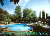 free swimming-pool at H Astoria.jpg